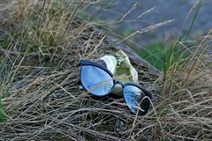 Sunglasses and an old can in the grass - environment garbage stock photography