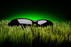 Sunglasses On Grass Against Fading Green Stock Image