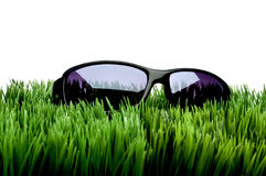 Sunglasses On Grass Against White Royalty Free Stock Images
