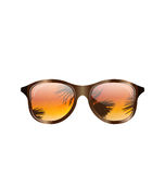 Sunglasses with Palms Reflection,  Stock Photo