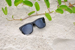 Sunglasses on the sand. In summer Royalty Free Stock Photography