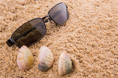 Sunglasses On Sand IV Royalty Free Stock Images
