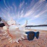 Sunglasses on a sandy beach Stock Photos