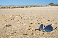 Sunglasses on sandy beach. A pair of tinted sunglasses on beach sand.Shallow focus on foreground where sunglasses is. There are some seashells scattered around royalty free stock photos
