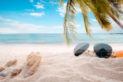 Sunglasses on sandy in seaside summer beach with starfish, shells, coral on sandbar and blur sea background Stock Photography