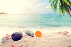 Sunglasses on sandy in seaside summer beach with starfish, shells, coral on sandbar and blur sea background. Royalty Free Stock Image