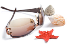 Sunglasses and sea shells isolated Stock Image
