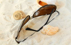 Sunglasses, seashells on a white sand beach Royalty Free Stock Photo
