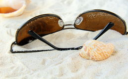 Sunglasses, seashells on a white sand beach Royalty Free Stock Photography