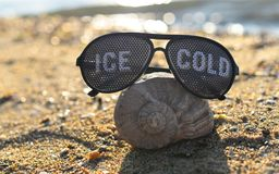 Sunglasses with shell. Sunglasses with  a shell in the sand on the beach Royalty Free Stock Photography