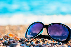 Sunglasses and shells Royalty Free Stock Image