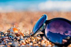 Sunglasses and shells Stock Images