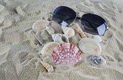 Sunglasses and shells on the beach sand Stock Photos