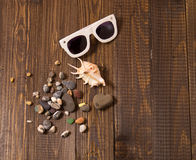 Sunglasses with shells Stock Image