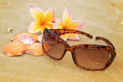 Sunglasses, shells on sand beach Royalty Free Stock Photo