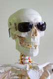 Sunglasses skull Stock Image