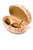 Sunglasses in spectacle case Royalty Free Stock Images