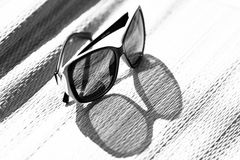 Sunglasses. Stylish sunglasses in the monochromatic presentation Stock Image