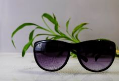 Sunglasses. With moisture drops lay on the background of greens Stock Photos