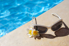 Sunglasses and white flowers of bougainvillea near pool Stock Images