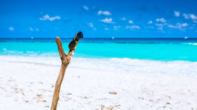Sunglasses on wooden post. On caribbean beach Royalty Free Stock Images