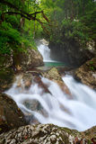 Sunik Water Hurst, Triglav National Park Royalty Free Stock Image