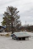 Sunked меньший дом после извержения вулкана в Chaiten. Стоковое фото RF