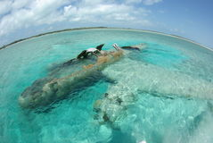 Sunken airplane. Airplane sunk in shallow water off the Bahamian coast. Used for drug transportation stock image