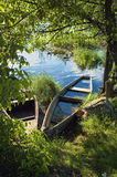 Sunken boat on the river in the green vegetation Royalty Free Stock Photo