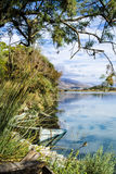 Sunken boat. View of lake with mountain in the background and fronds from tree and rushes and reeds in foreground and a partially cloudy sky Royalty Free Stock Images