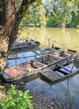 Sunken boats on the river Tisza Stock Images