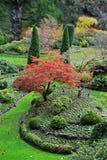 Sunken garden in butchart gardens Stock Photography