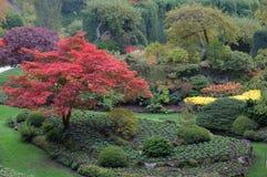 Sunken garden in fall Stock Photo