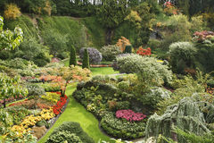The Sunken-garden on island Vancouver Royalty Free Stock Images