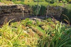 Sunken Garden - Mount Gambier. The Sunken Garden was built over a century ago in the Umpherston Sinkhole - Mount Gambier, SA, Australia Royalty Free Stock Image