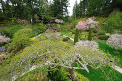 Sunken garden victoria bc Royalty Free Stock Photography