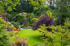 Sunken gardens at Butchart Gardens, Victoria, BC. Flowers and trees in sunken gardens at Butchart Gardens in Victoria, British Columbia, Canada stock images