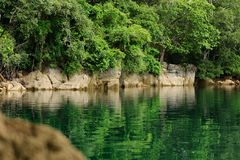 The Sunken Lake. In Zambia is beautiful and the deepest part of the lake has never been found Royalty Free Stock Photo
