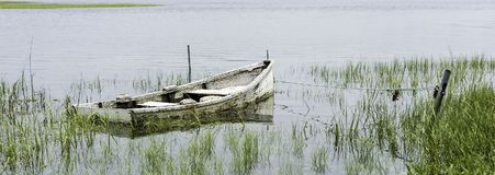 Sunken Skiff In Marsh. A decrepid skiff half full of water sits on the bottom of a grassy marshland Stock Photos