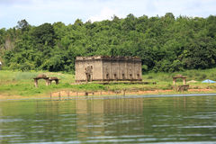The Sunken temple, sinking temple Royalty Free Stock Images