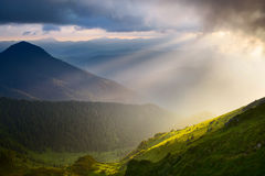 Sunlight Royalty Free Stock Images