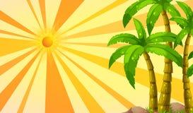 sunlight ilustracji