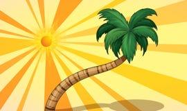 sunlight royalty ilustracja