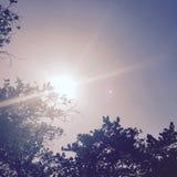 sunlight Photo stock