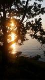 sunlight Photo libre de droits