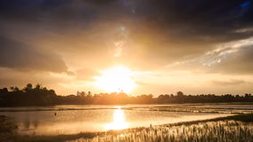 Sunlight from behind Clouds over Water Rice Fields at Sunset stock video footage