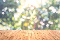 Sunlight and bokeh nature background Royalty Free Stock Photo