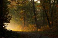 Sunlight break-trough Royalty Free Stock Images