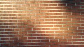 Sunlight on brickwork royalty free stock photography