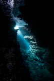 Sunlight and Cavern Underwater. Bright sunlight pierces the darkness of an underwater cavern in the Solomon Islands royalty free stock photos